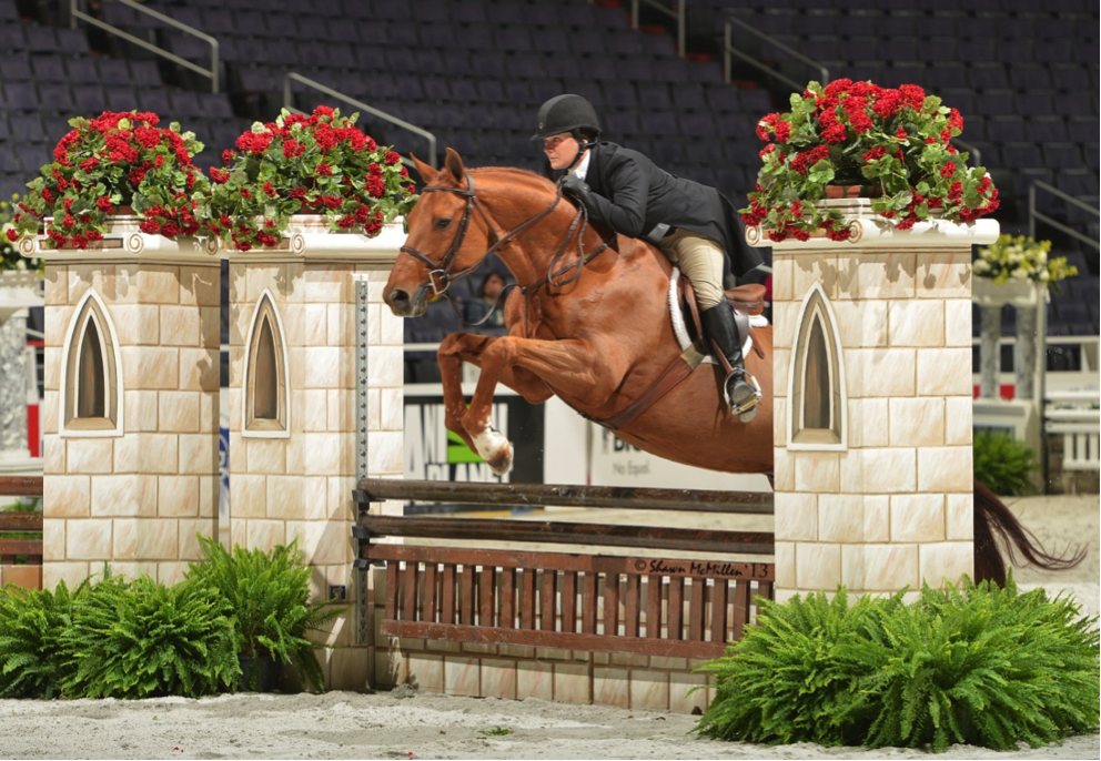 Daryl Whitmoyer Hunter Jumper Rider