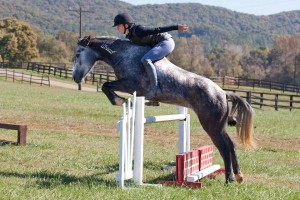 A typical jump school for Equiflexsleeve rider Elisa Wallace