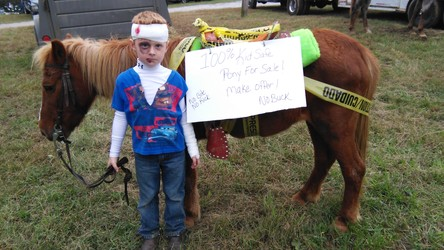 """Kid Safe"" pony - love it!"